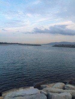 江井ヶ島 メバリングでガシラの26cm