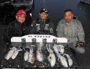 黒島の磯 夜釣り、通しでのアオリイカ釣果