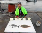黒島の筏 チヌのほかヒラメも釣果ありました