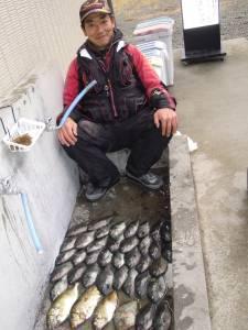 湯浅の地磯 フカセで小グレ大漁、エギングではアオリイカとコウイカも