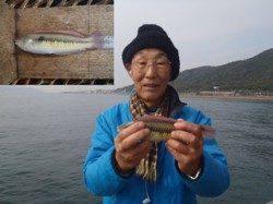 須磨海づり公園 オキアミを餌に良型のベラをキャッチ