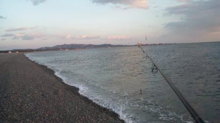 久々に釣れました 煙樹ヶ浜のメジロ