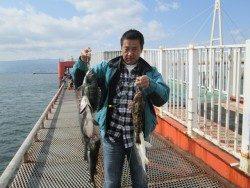 尼崎市立魚つり公園 セイゴ・チヌ・キビレ・アイナメと絶好調♪