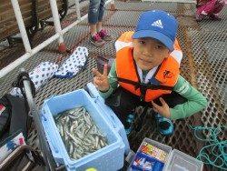 尼崎市立魚つり公園でイワシ、GW中はサビキ釣りに期待