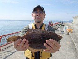 神戸市立平磯海づり公園 投げ釣りでカレイ35cm!