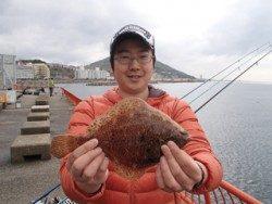神戸市立平磯海づり公園 投げ釣りでメイタガレイ