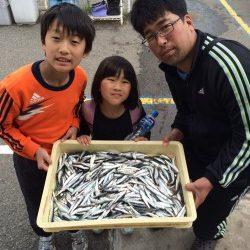 和歌山マリーナシティ釣り公園 サビキでイワシの大漁釣果