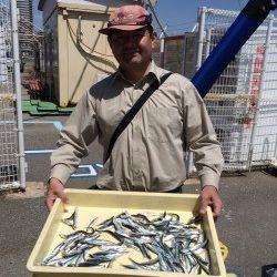和歌山マリーナシティ海釣り公園 サビキで豆イワシの釣果