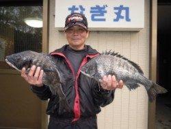 カルモ島でフカセ釣り チヌ40cm〜48.5cm