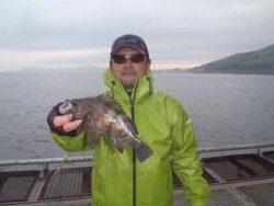 神戸市立須磨海づり公園 ナイスサイズのメバル釣果