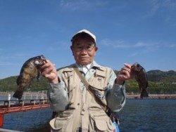 須磨海釣り公園 サビキでメバル3尾の釣果