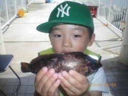 姫路市立遊魚センター 探り釣りでアイナメ、他