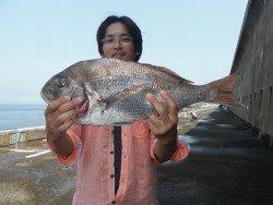 北港魚つり公園 マダイ 57㎝