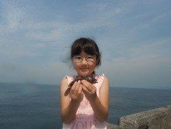 和歌山北港魚つり公園 アコウ釣ったよ!