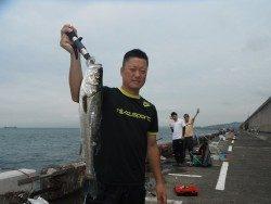 北港釣り公園 ハネ50cmの釣果
