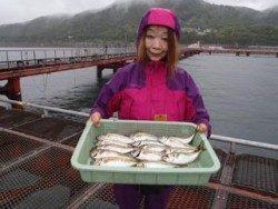神戸市立須磨海づり公園 サビキでアジの釣果です