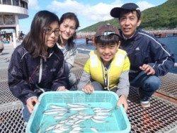 須磨海釣り公園 サビキでアジ・イワシ・サバの釣果