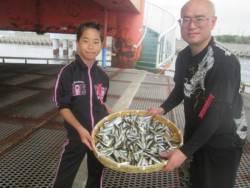尼崎市立魚つり公園 豆アジ釣れ続いています!