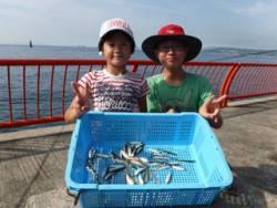 神戸市立平磯海づり公園 サビキでアジ、イワシ