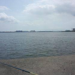 ハゼ釣り | 愛知県 | 釣果情報 堤防 ジギング 船釣 管理釣り場 釣り情報 | カンパリ全国版