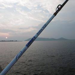 四国初タコ | 香川 | 釣果情報 堤防 ジギング 船釣 管理釣り場 釣り情報 | カンパリ全国版