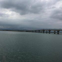 台風後…。   愛知県   釣果情報 堤防 ジギング 船釣 管理釣り場 釣り情報   カンパリ全国版