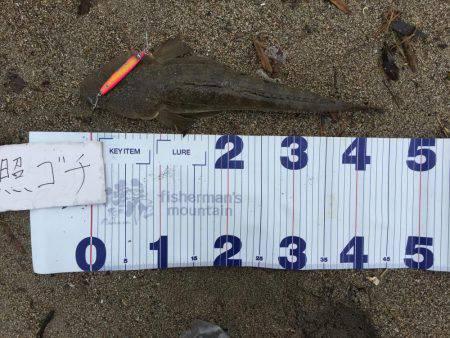 0と1 | 宮城 | 釣果情報 堤防 ジギング 船釣 管理釣り場 釣り情報 | カンパリ全国版