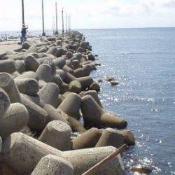 イカはどこへ? | 石川県 | 釣果情報 堤防 ジギング 船釣 管理釣り場 釣り情報 | カンパリ全国版