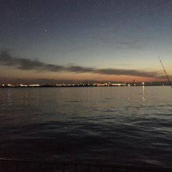 アジ釣り   愛知県   釣果情報 堤防 ジギング 船釣 管理釣り場 釣り情報   カンパリ全国版