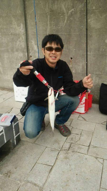 秋アオリが釣りたい ~season2淡路遠征~