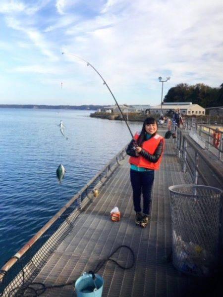 のとじま臨海公園海づりセンター 釣果 | 石川県 | 釣果情報 堤防 ジギング 船釣 管理釣り場 釣り情報 | カンパリ全国版