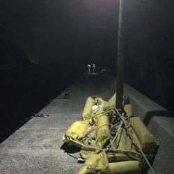 ガシラを何て言うのだろう? | 島根 | 釣果情報 堤防 ジギング 船釣 管理釣り場 釣り情報 | カンパリ全国版