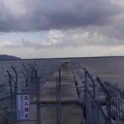 朝だけ短時間釣行 | 鳥取 | 釣果情報 堤防 ジギング 船釣 管理釣り場 釣り情報 | カンパリ全国版