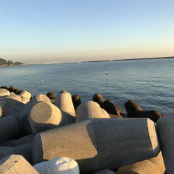 ロックフィッシュ | 福岡 | 釣果情報 堤防 ジギング 船釣 管理釣り場 釣り情報 | カンパリ全国版