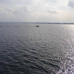 やっと釣れたー | 鳥取 | 釣果情報 堤防 ジギング 船釣 管理釣り場 釣り情報 | カンパリ全国版