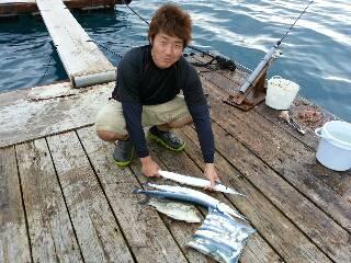本部釣りイカダ 釣果 |  | 釣果情報 堤防 ジギング 船釣 管理釣り場 釣り情報 | カンパリ全国版