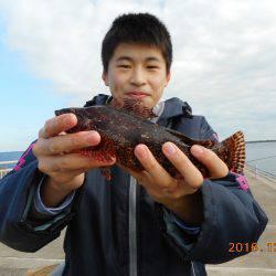 鹿島港魚釣園 釣果   茨城   釣果情報 堤防 ジギング 船釣 管理釣り場 釣り情報   カンパリ全国版