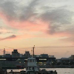 コウイカ | 愛媛 | 釣果情報 堤防 ジギング 船釣 管理釣り場 釣り情報 | カンパリ全国版