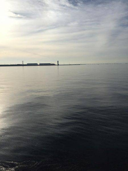 夜釣り | 愛知県 | 釣果情報 堤防 ジギング 船釣 管理釣り場 釣り情報 | カンパリ全国版