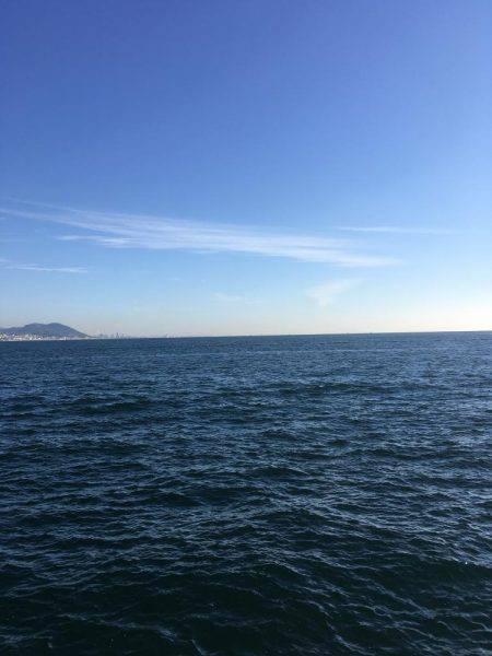 朝撃沈 | 淡路島 | 釣果情報 堤防 ジギング 船釣 管理釣り場 釣り情報 | カンパリ全国版