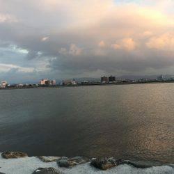 初マゴチゲーム   和歌山県   釣果情報 堤防 ジギング 船釣 管理釣り場 釣り情報   カンパリ全国版