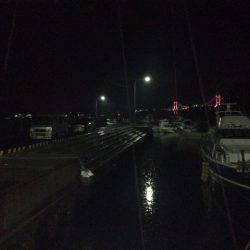 夜釣り | 長崎 | 釣果情報 堤防 ジギング 船釣 管理釣り場 釣り情報 | カンパリ全国版