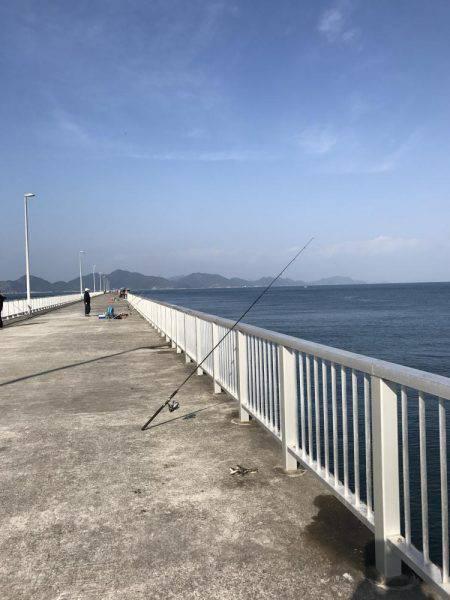 カワハギ | 愛媛 | 釣果情報 堤防 ジギング 船釣 管理釣り場 釣り情報 | カンパリ全国版