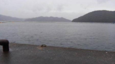 ベラ狙い | 三重県 | 釣果情報 堤防 ジギング 船釣 管理釣り場 釣り情報 | カンパリ全国版