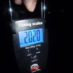 プチ爆 | 和歌山県 | 釣果情報 堤防 ジギング 船釣 管理釣り場 釣り情報 | カンパリ全国版