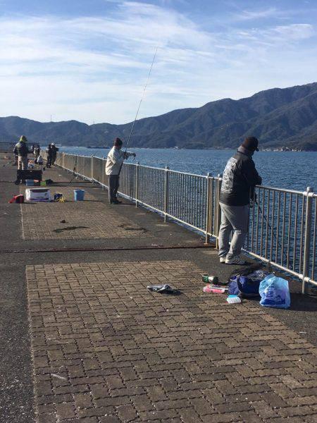 初釣りサゴシ | 福井県 | 釣果情報 堤防 ジギング 船釣 管理釣り場 釣り情報 | カンパリ全国版