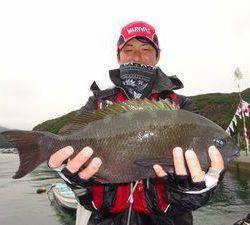 長伸丸 釣果 | 大分 | 釣果情報 堤防 ジギング 船釣 管理釣り場 釣り情報 | カンパリ全国版