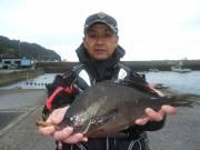 春日丸 釣果 | 大分 | 釣果情報 堤防 ジギング 船釣 管理釣り場 釣り情報 | カンパリ全国版
