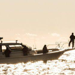 ジギング船 全国の140隻