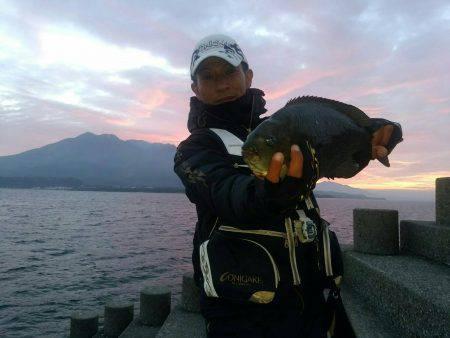 天竜丸 釣果   鹿児島   釣果情報 堤防 ジギング 船釣 管理釣り場 釣り情報   カンパリ全国版